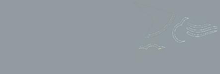RCPA-Logo-2015-gray v3.png